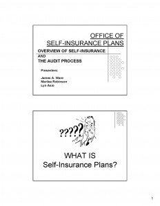 03-11-06_Office of Self Insurance Plans (OSIP) Audit Process__Page_01_Page_01