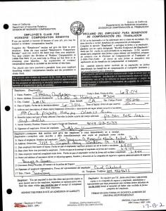 06-07-04 DWC-1 Form