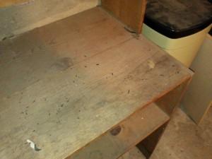 06-26-12 Avena basement_2
