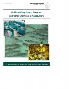 Guide-to-fish01
