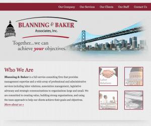 Blanning _ Baker