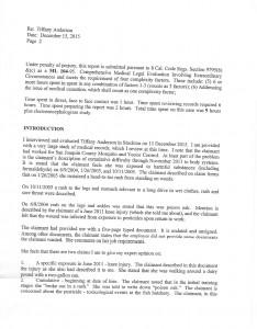 1-6-16 QME Report Bronshvag_Page_04
