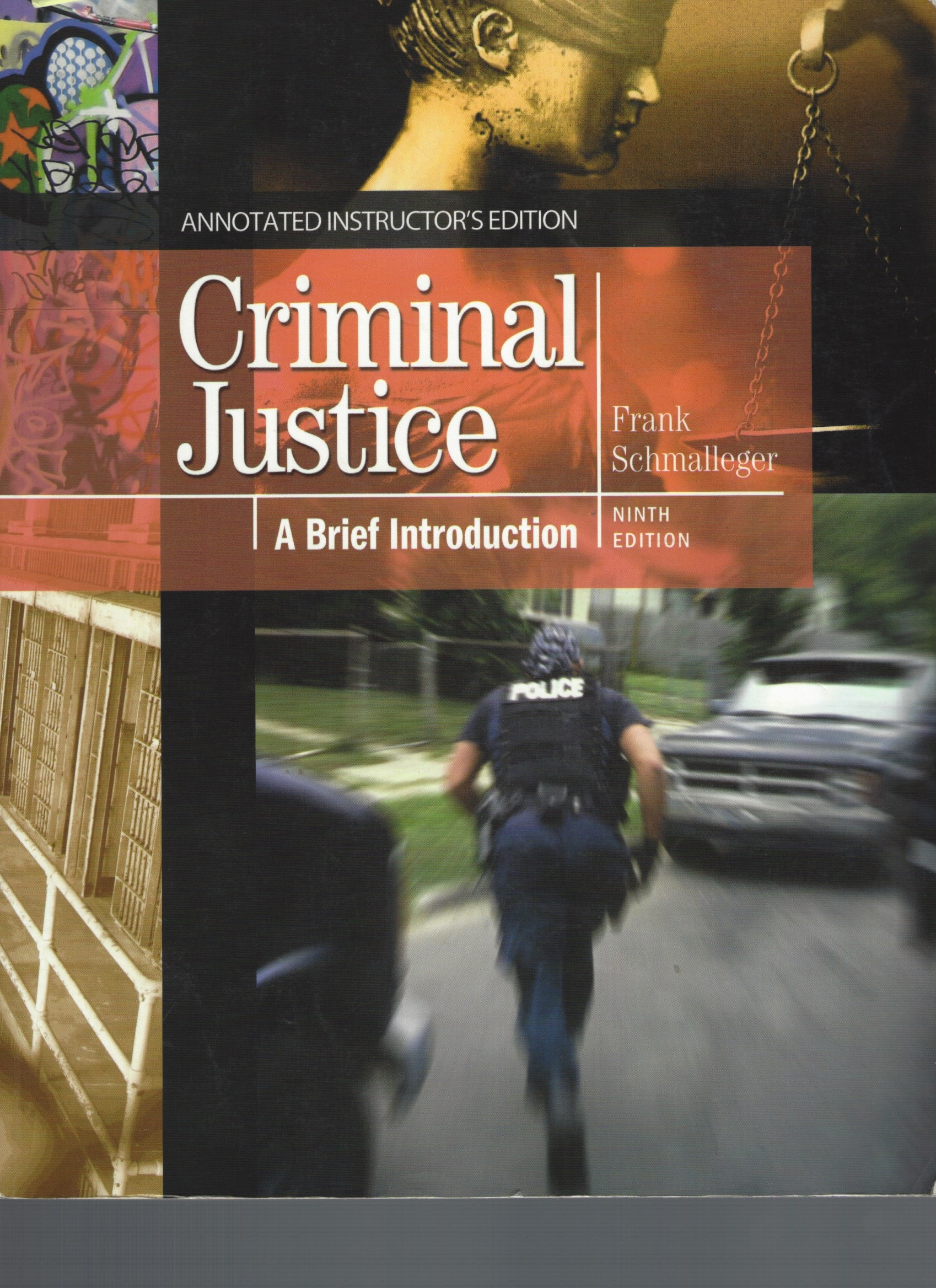 an analysis of the justice concept and a brief introduction to the justice crimes A crime-analysis and police-management process built on crime mapping that was developed by the new york city police department in the mid- 1990's a minor violation of the law (sometimes called a petty crime ) that demoralizes community residents and business people.
