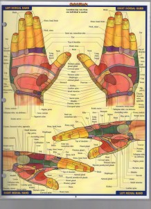 Reflexology Bar Charts Inc_Page_3